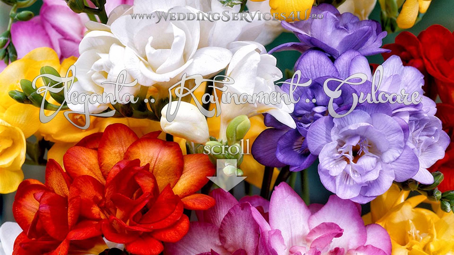 WeddingServices4U.ro Flori pentru Nunta si Botez, Buchete si Lumanari, Decoratiuni si Aranjamente Florale