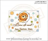 PCGB-085-C Place Card cu Plic de Bani sigilabil pentru Botez cu Pui de Leu leut