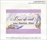 PCDLN-023-C-01_place_card_plic_de_bani_nunta_lila_botez_mov_levantica_lavanda