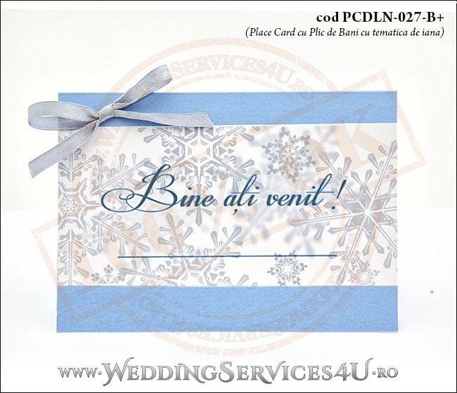 PCDLN-027-B+_plic_de_bani_cu_stelute_de_gheata_botez_nunta_de_iarna