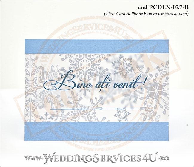 PCDLN-027-B_plicuri_de_bani_tematica_de_iarna_nunta_boez