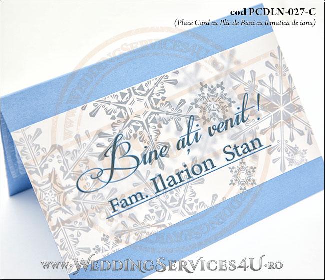 PCDLN-027-C-02_plic_de_bani_nunta_botez_cu_stelute_place_card_de_iarna