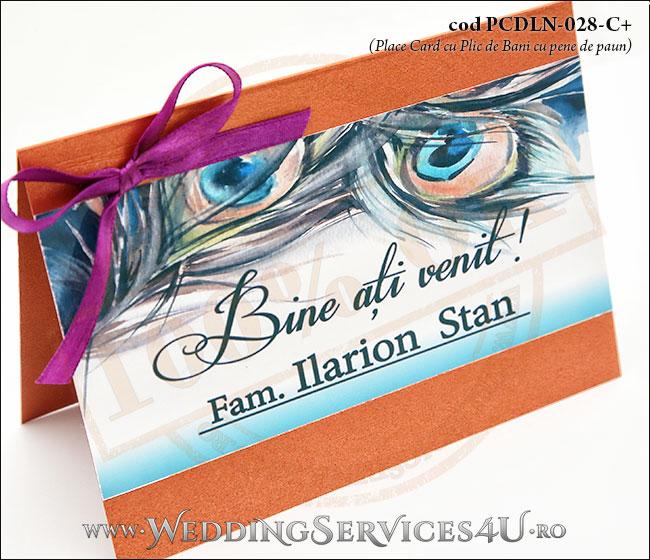 PCDLN-028-C+-02_plicuri_de_bani_exotice_place_card_nunta_botez_cu_pene_de_paun