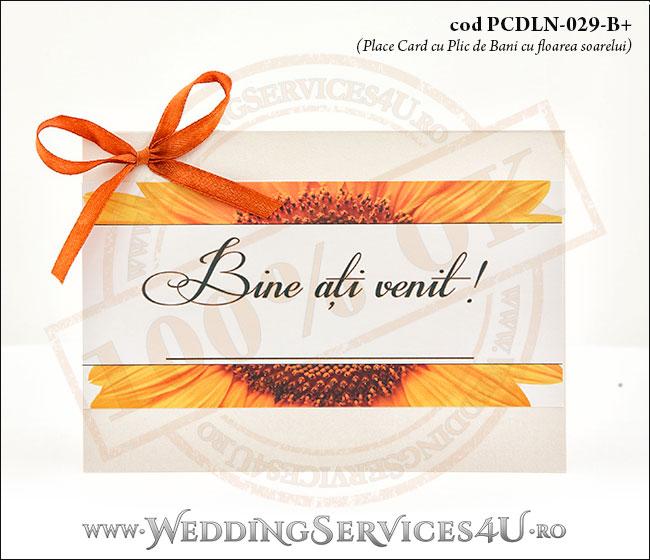 PCDLN-029-B+_plic_de_bani_nunti_botezuri_deosebite_cu_floarea_soarelui