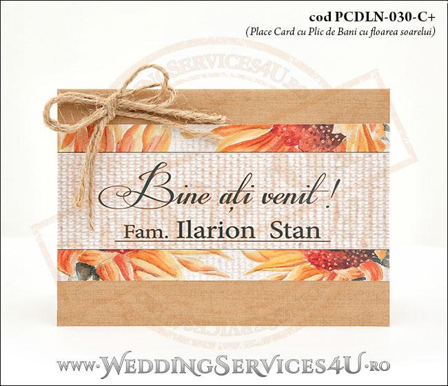 PCDLN-030-C+-01_plic_de_bani_cu_flori_de_floarea_soarelui_nunti_botezuri_deosebite_traditionale