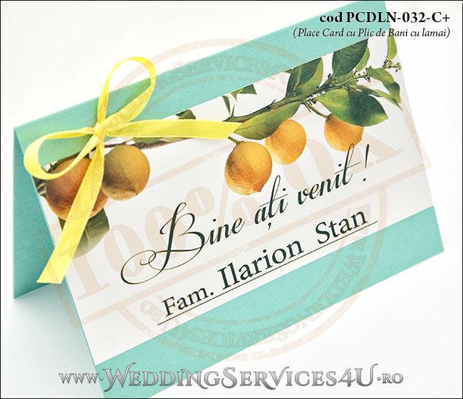 PCDLN-032-C+-02_place_card_plic_de_bani_deosebit_cu_lamaie