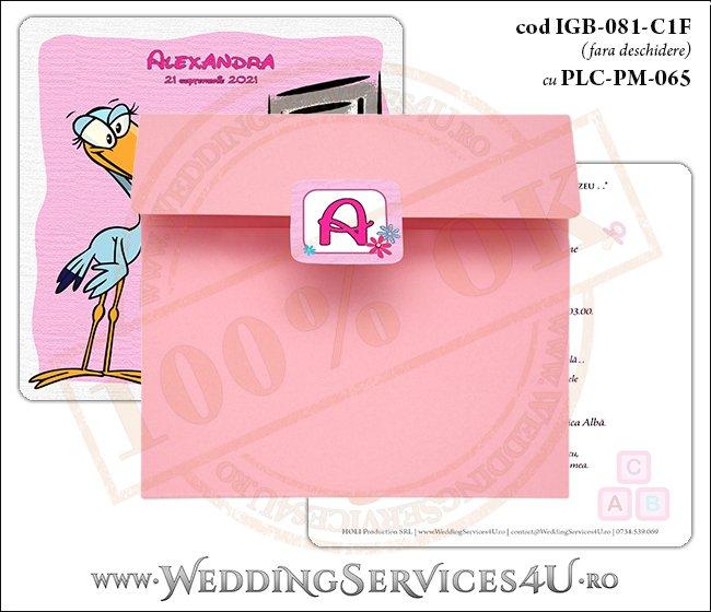 IGB-081-C1F cu PLC-PM-065 Invitatie de Botez cu o barza 'livrand' un bebelus la usa casei (baby delivery)