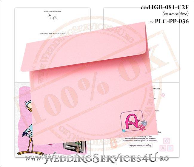 IGB-081-C2F cu PLC-PP-036 Invitatie de Botez cu o barza 'livrand' un bebelus la usa casei (baby delivery)