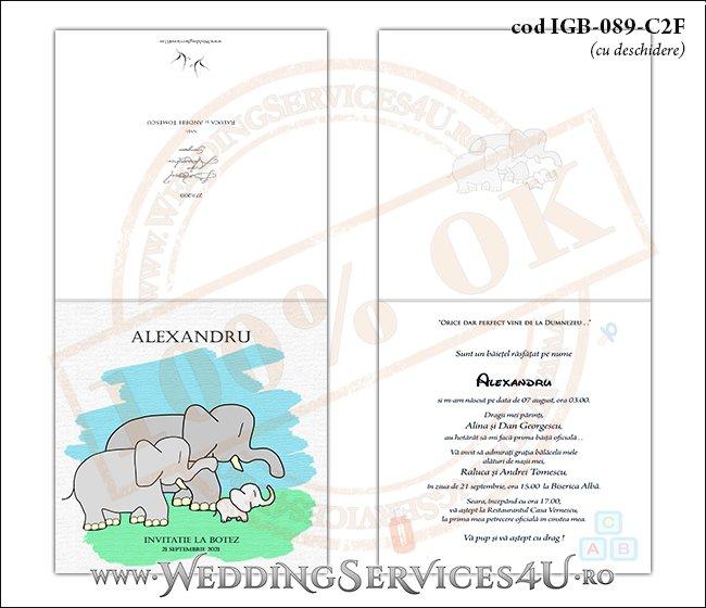 IGB-089-C2F Invitatie de Botez cu o familie de elefanti (un bebe elefantel impreuna cu parintii lui)